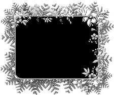 fern-flower-frame