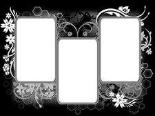 http://www.essexgirl.uk.com/msk_23/sg_triple-floral-grungeframe1.jpg