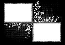 duo-floral-metallic-frame